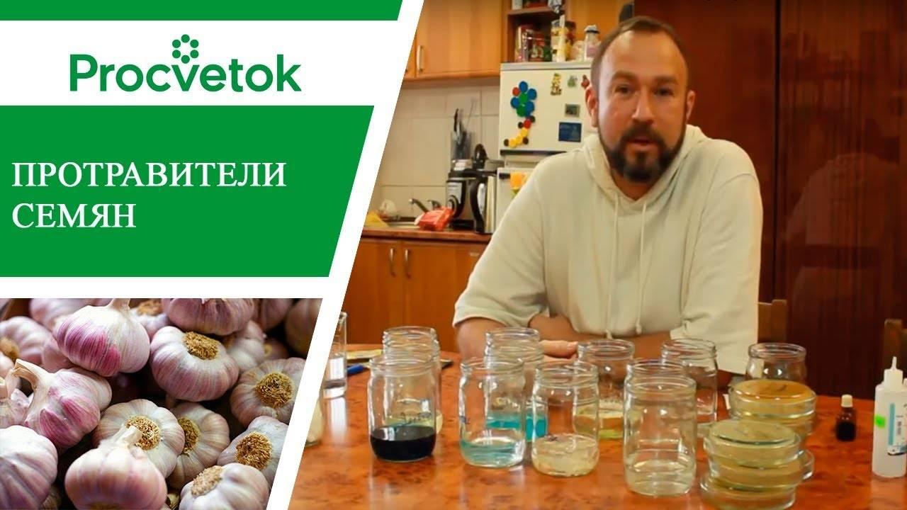Барботирование семян в домашних условиях: видео