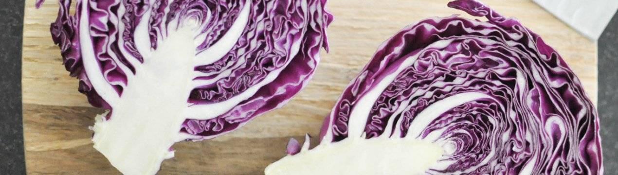 Краснокочанная капуста: польза для здоровья женщин, мужчин, детей, есть ли вред для здоровья, куда используется, что можно приготовить и какова ее калорийность?