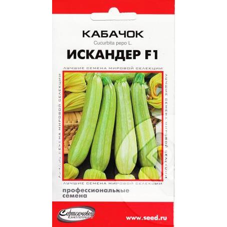 Описание сорта кабачка искандер f1 — как поднять урожайность