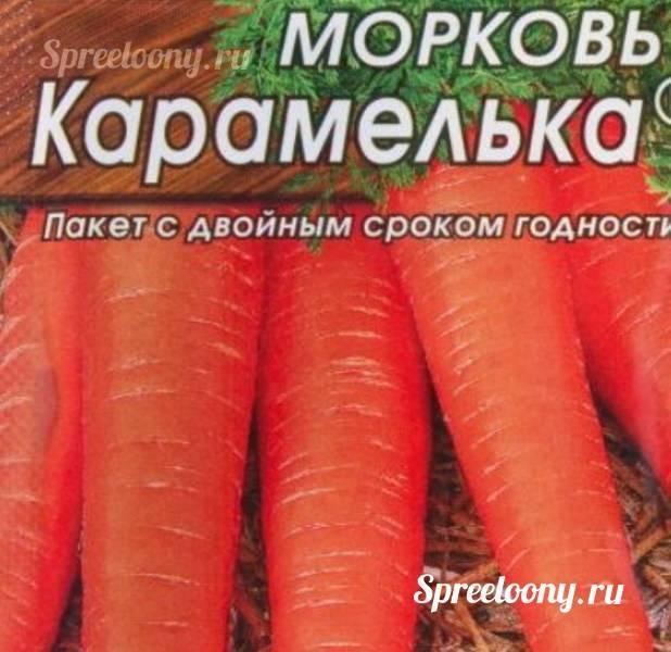 Морковь карамелька: отзывы, фото, урожайность