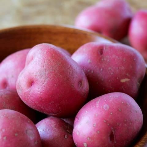 Сорт картофеля «лаура»: характеристика, описание, урожайность, отзывы и фото