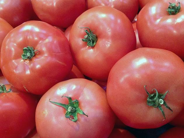 Гибрид томата «розовое чудо f1»: фото, видео, отзывы, описание, характеристика, урожайность