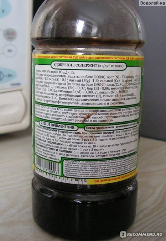 Цитрусовые: описание,удобрение,подкормка.