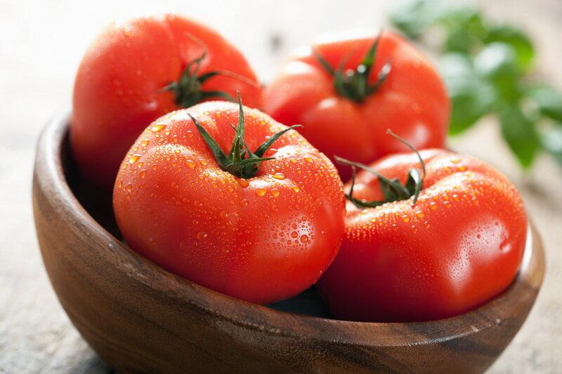 Отличный урожай помидор – подготовка семян томатов к посеву на рассаду в домашних условиях