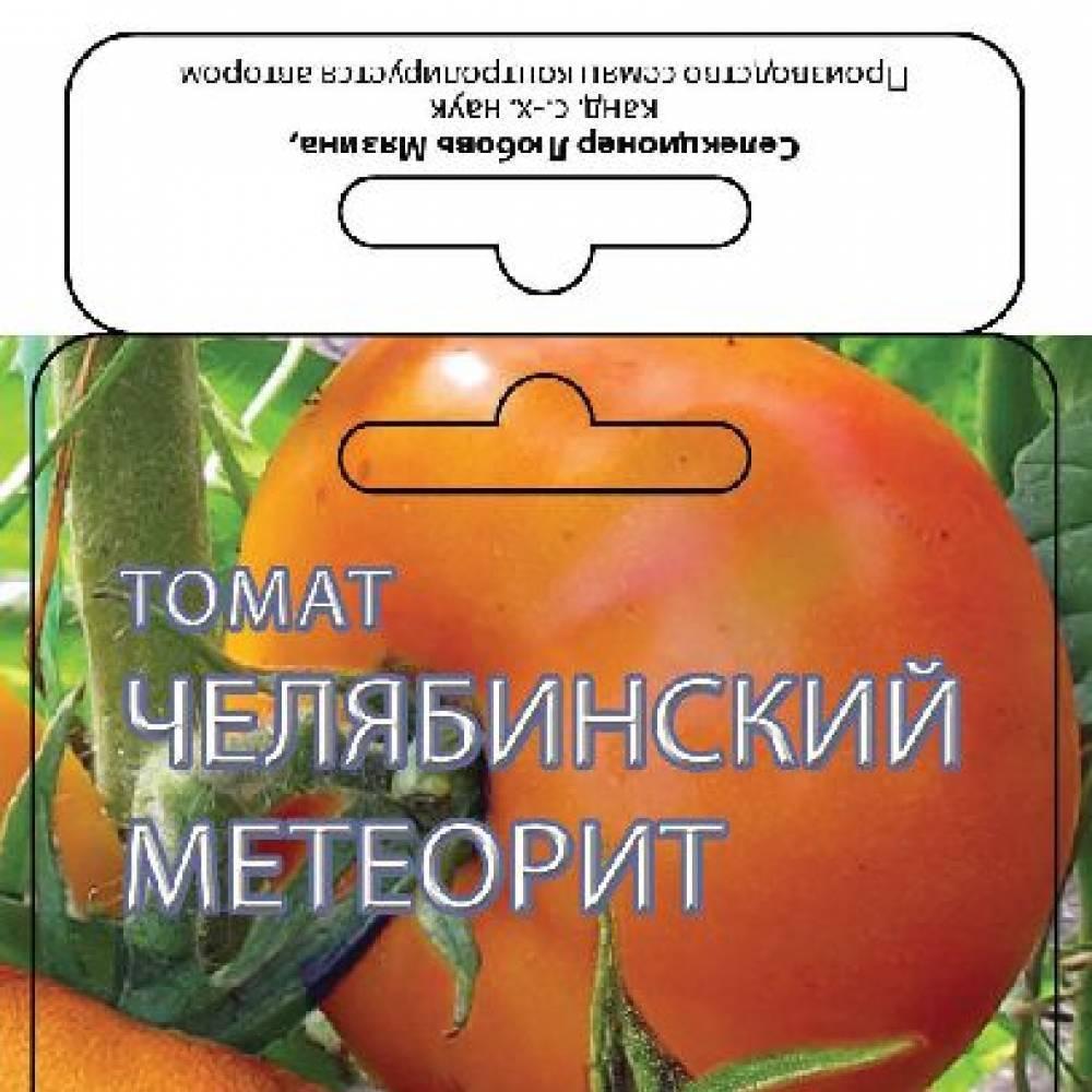 Томат челябинский метеорит отзывы фото урожайность