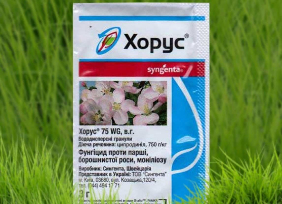 Препарат Хорус для обработки растений