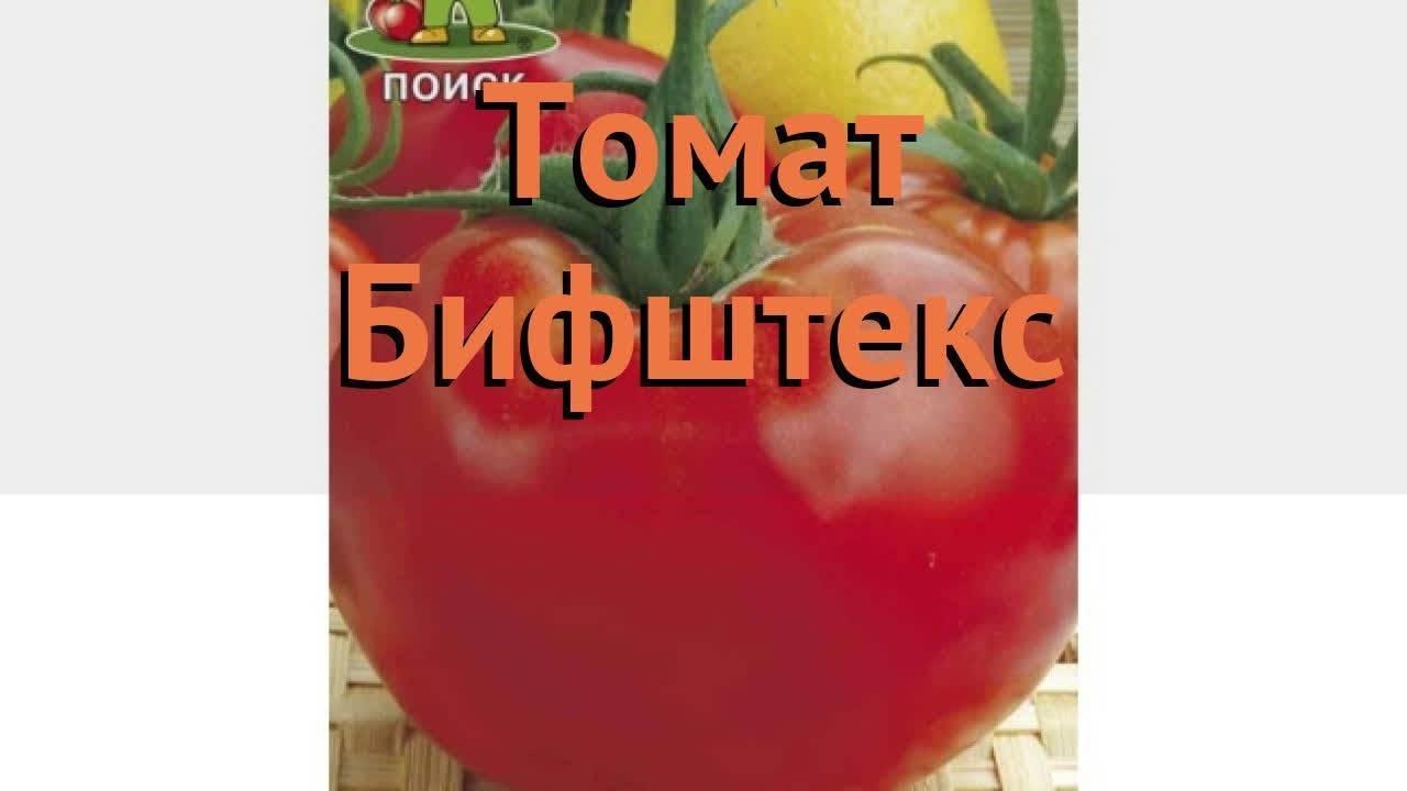 Томат бифштекс: отзывы + фото