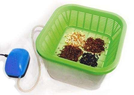 Барботирование семян. барботирование семян в домашних условиях что такое барботирование семян