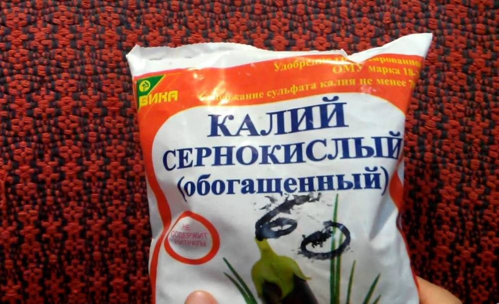 Чем подкормить рододендроны в мае. сезонные подкормки рододендрона: чем удобрить декоративный кустарник весной и осенью