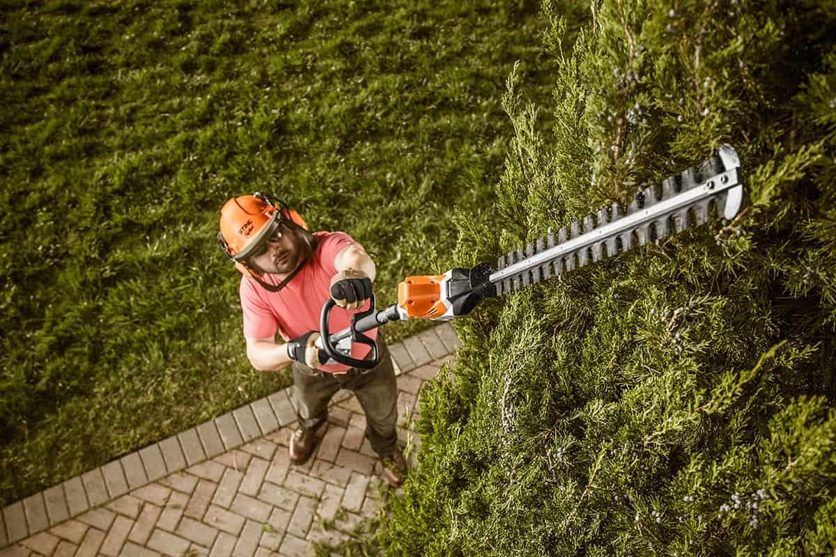 Кусторез: особенности садовых триммеров-кусторезов. характеристики моделей hammer kst 600, ryobi, gardena и других. как выбрать телескопический кусторез