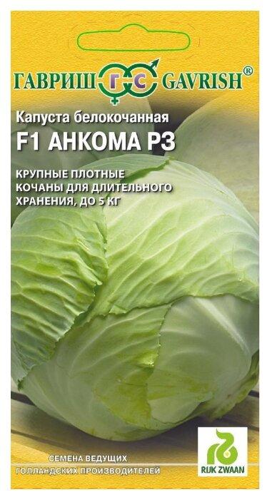 Капуста аммон f1 — описание сорта, фото, отзывы, посадка и уход