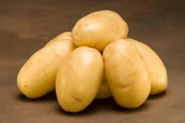 Сорт картофеля «зорачка»: характеристика, описание, урожайность, отзывы и фото