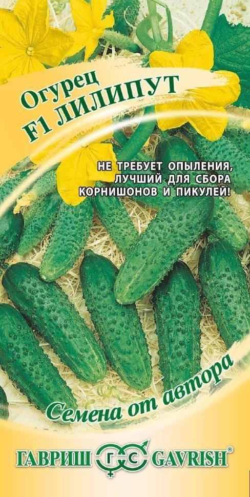 Огурец лилипут f1 — описание и характеристика сорта