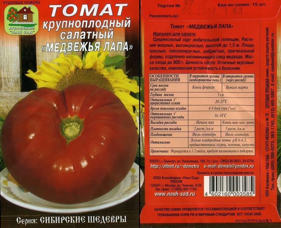 Сорт томата «медвежья лапа»: описание, характеристика, посев на рассаду, подкормка, урожайность, фото, видео и самые распространенные болезни томатов