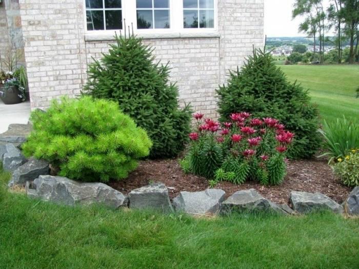 Ландшафтный дизайн с композициями хвойных растений: фото