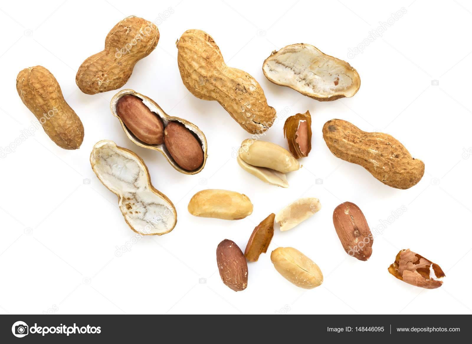 Арахис — земляной орех