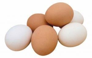 Можно ли есть яйца при подагре: мнение и советы врачей