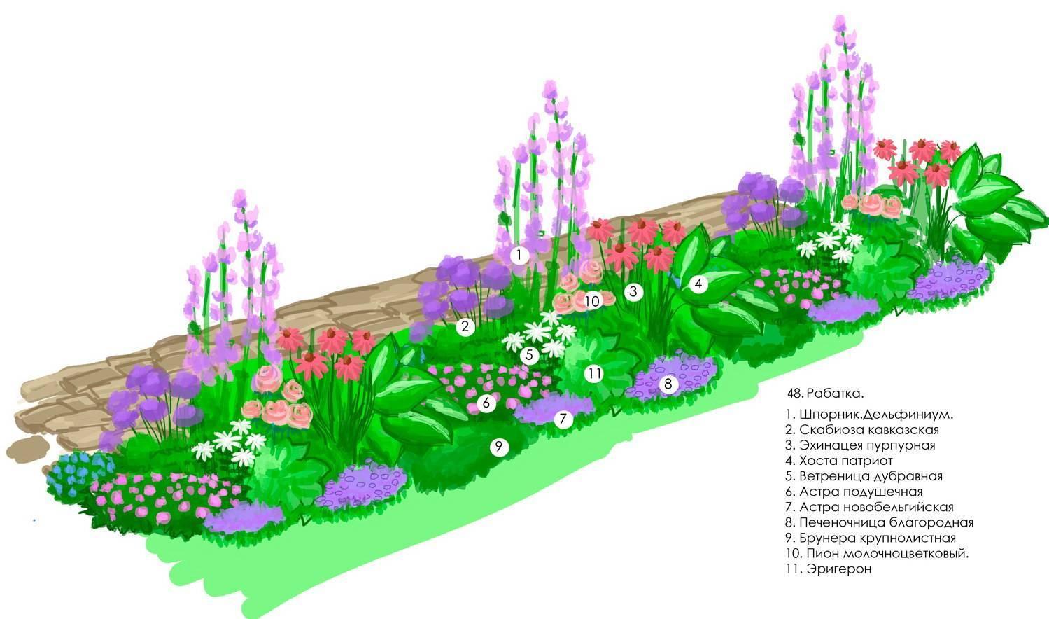 Создание непрерывно цветущих клумб