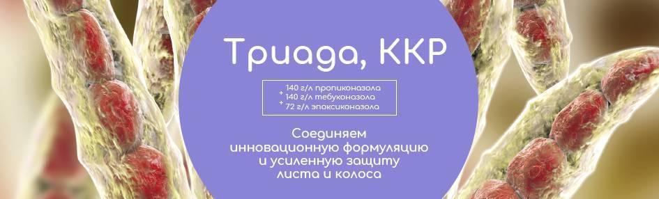 Инструкция по применению фунгицида нативо, норма расхода и аналоги