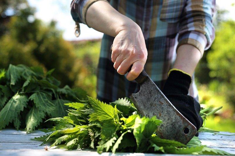 Жидкие органические удобрения для подкормки овощей – как приготовить и применять