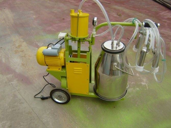 Доильные аппараты буренка — техника, которая позволит быстро и качественно собирать молоко