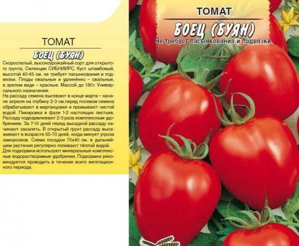 """Томат """"буян"""" (""""боец""""): фото касного и желтого сорта, описание и основные характеристики помидоры"""