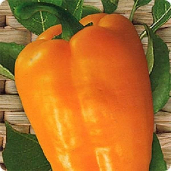 Перец сладкий абрикосовая фаворитка