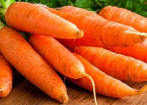 Морковь алтайская лакомка — описание сорта, фото, отзывы, посадка и уход