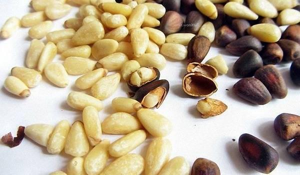 Промышленная очистка кедровых орехов