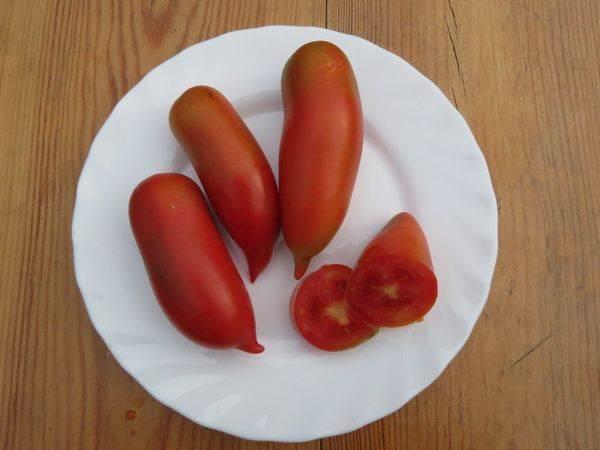 Помидоры хохлома: отменный вкус, высокая урожайность