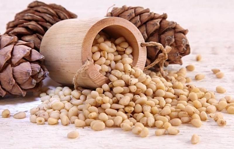 Кедровый орех — википедия. что такое кедровый орех