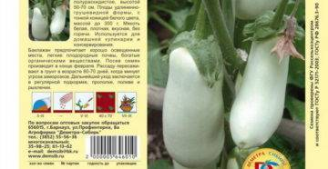 Баклажан буржуй f1: описание сорта, фото, отзывы, урожайность