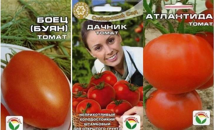 Обзор сортов низкорослых томатов, не требующих пасынкования