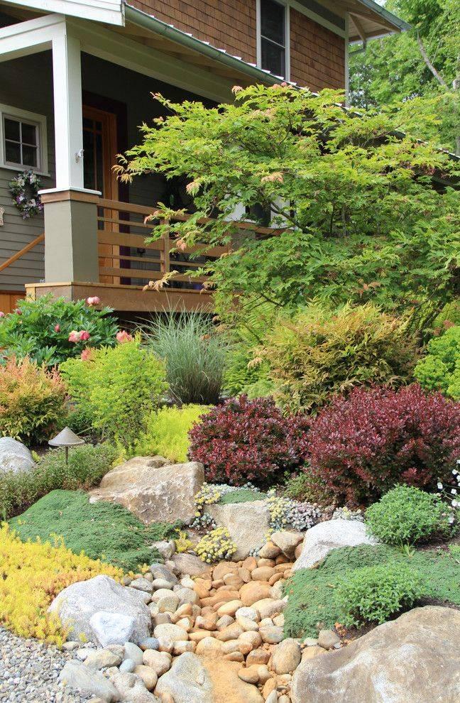 Растения для альпийской горки (79 фото): названия цветов для дачи, какие нужны многолетние сорта для цветения на все лето и как подобрать хвойные растения