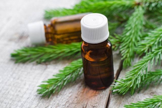 Пихтовое масло: лечебные свойства