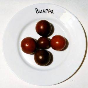 Томат виагра: характеристика и описание сорта, фото черных помидоров, отзывы тех кто сажал семена об урожайности растения шоколадного цвета