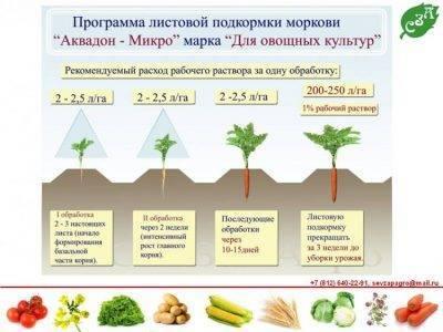 Подкормка жимолости весной: удобрения для увеличения урожая