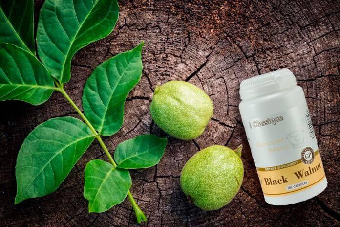 Черный орех — полезные свойства и противопоказания