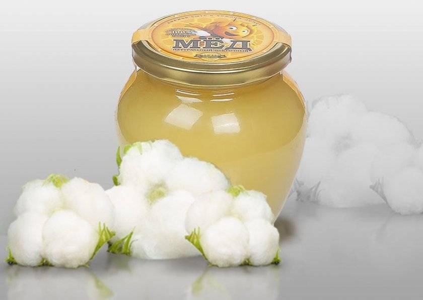 Мед подсолнуха — польза и вред