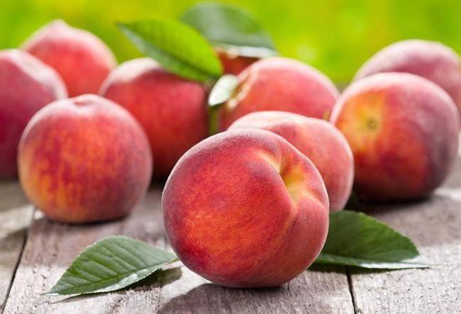 Персик сорта редхейвен – высокий урожай вкусных, крупных плодов в прохладных районах