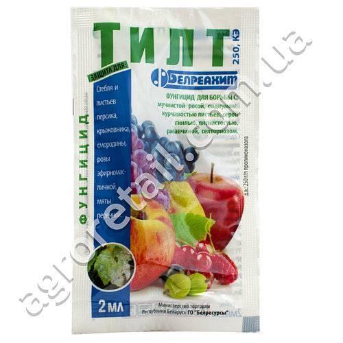 """Инструкция по применению препарата """"тилт"""" для защиты растений от болезней"""