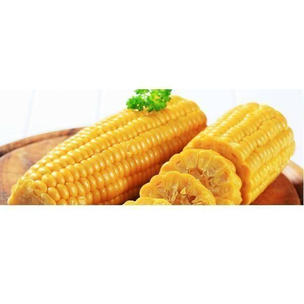 Сорта кукуруза для средней полосы россии