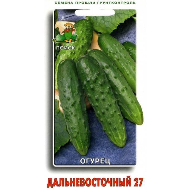 Как посадить и вырастить огурцы сорта «дальневосточный 27»