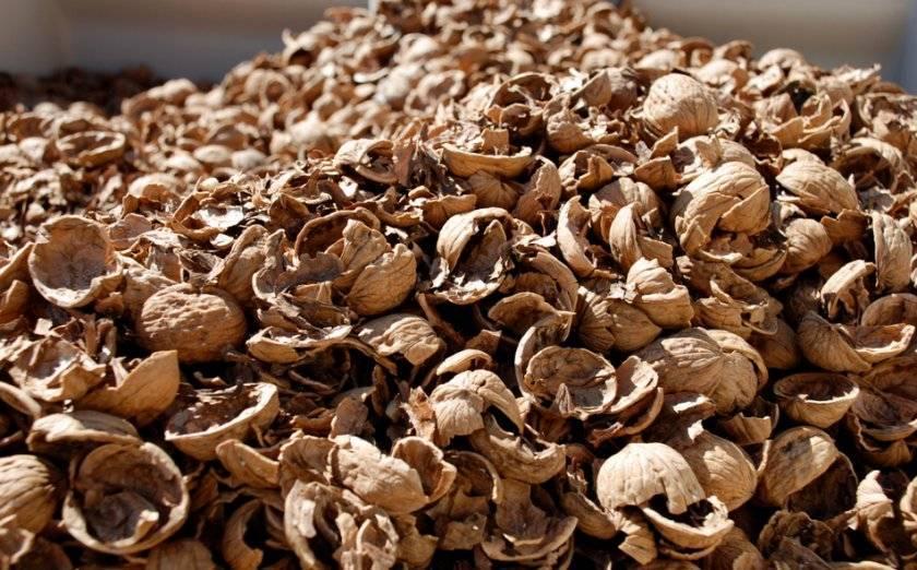 Применение скорлупы грецкого ореха и кожуры