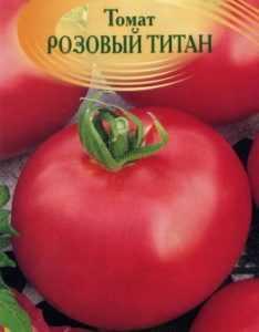 Описание сорта томатов «титан»: отзывы