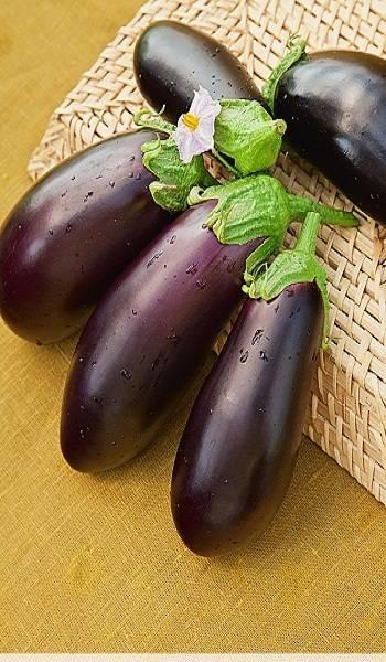 Баклажан фиолетовое чудо f1 — описание сорта, отзывы и характеристика