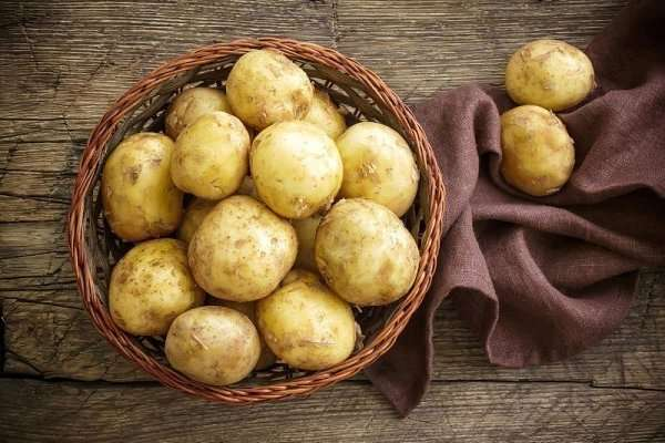 Картофель «голубизна»: характеристика и описание сорта