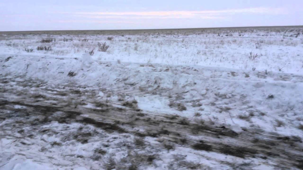 Зачем на полях проводят снегозадержание. снегозадержание — одно из важных агротехнических мероприятий