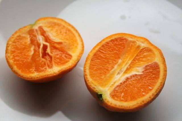 Какие виды гибридов мандарина существуют