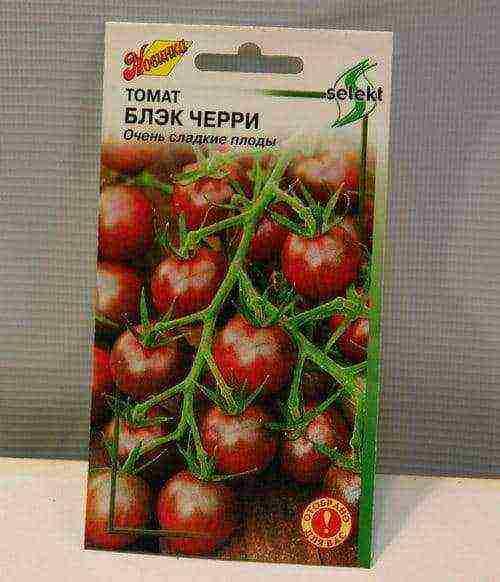 Вкусный, неприхотливый, красивый сорт томата «шоколадный»